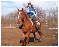Orsi-Ful Bt. - lovaglás íjászat lovastábor lovak bértartása inárcs pestmegye, lakatosmunkák, hagyományőrzés, kutyakozmetika Inárcs, mobilistálló, istállótechnika, lovaskocsigyártás, mobilbox